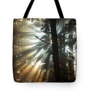 Sunbeams Through Trees Tote Bag