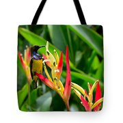 Sunbird On Heliconia Ginger Flowers Singapore Tote Bag