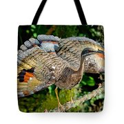 Sunbittern Displaying Tote Bag