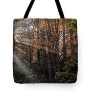 Sunbreak Tote Bag