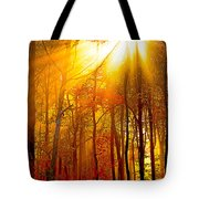 Sunburst In The Forest Tote Bag