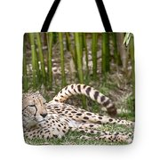 Sunday Afternoon Lazing  Tote Bag