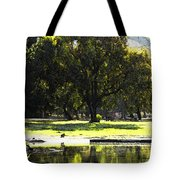 Sunday In The Park Tote Bag by Anne Mott