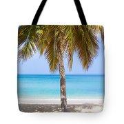 Sunday Palm Tote Bag