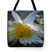 Sundown At Lotus Pond Tote Bag