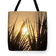 Sundown Through The Grass Tote Bag