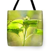 Sundrenched Sunflower - Digital Paint Tote Bag