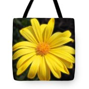 Sunflare Tote Bag