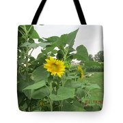 Sunflower And Cornfield Tote Bag