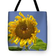 Sunflower At Latrun Tote Bag