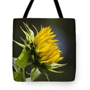 Sunflower Bright Side Tote Bag