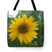 Sunflower Directly... Tote Bag