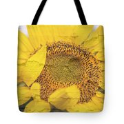 Sunflower Drying Up Tote Bag
