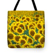Sunflower Explosion Tote Bag