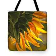 Sunflower Farm 1 Tote Bag