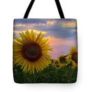 Sunflower Field Tote Bag by Debra and Dave Vanderlaan
