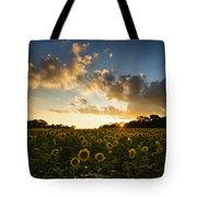 Sunflower Field Sunset Tote Bag