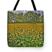 Sunflower Fields Ford World Headquarters Dearborn Mi Tote Bag