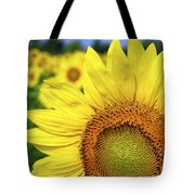 Sunflower In Field Tote Bag by Elena Elisseeva