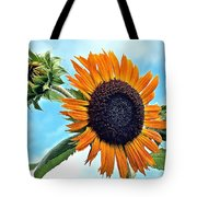 Sunflower In The Sky Tote Bag by Annette Allman