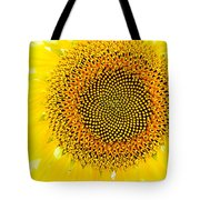 Sunflower In The Summer Sun Tote Bag