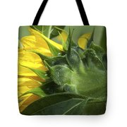 Sunflower Opening Tote Bag
