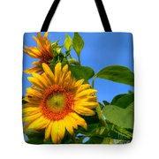 Sunflower Pair Tote Bag