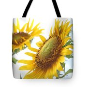 Sunflower Perspective Tote Bag by Kerri Mortenson