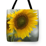 Sunflower Portrait Tote Bag