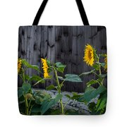 Sunflower Quartet Tote Bag