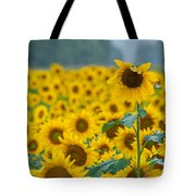 Sunflower Rain Sussex Nj Tote Bag