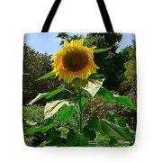 Sunflower Sally Tote Bag