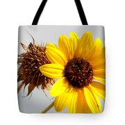 Sunflower Stages Tote Bag
