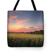 Sunflower Sunset Tote Bag by Bill Wakeley