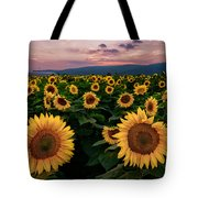 Sunflower Sunset II Tote Bag