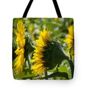 Sunflower Symphony Tote Bag