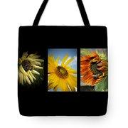 Sunflower Trio  Tote Bag