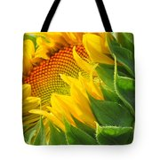 Sunflower Unfolding  Tote Bag
