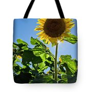 Sunflower With Sun Tote Bag by Donna Doherty