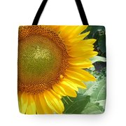 Sunflowers #2 Tote Bag