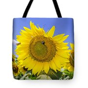 Sunflowers And Blue Sky Tote Bag