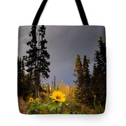 Sunflowers In Northern Garden In Fall Tote Bag