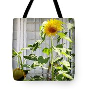 Sunflowers In The Window Tote Bag