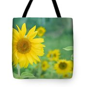 Sunflowers Vintage Dreams Tote Bag