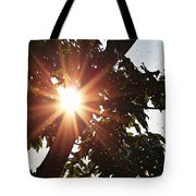 Sunhine And Raindrops Tote Bag