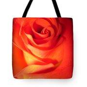 Sunkissed Orange Rose 10 Tote Bag