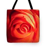Sunkissed Orange Rose 11 Tote Bag