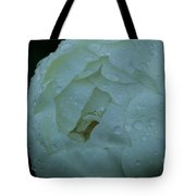 Sunless Tote Bag