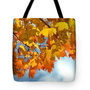 Sunlight And Shadow - Autumn Leaves Two Tote Bag