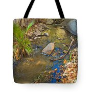 Sunlight On Andreas Creek In Indian Canyons-ca Tote Bag